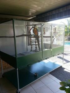 custom built aviary